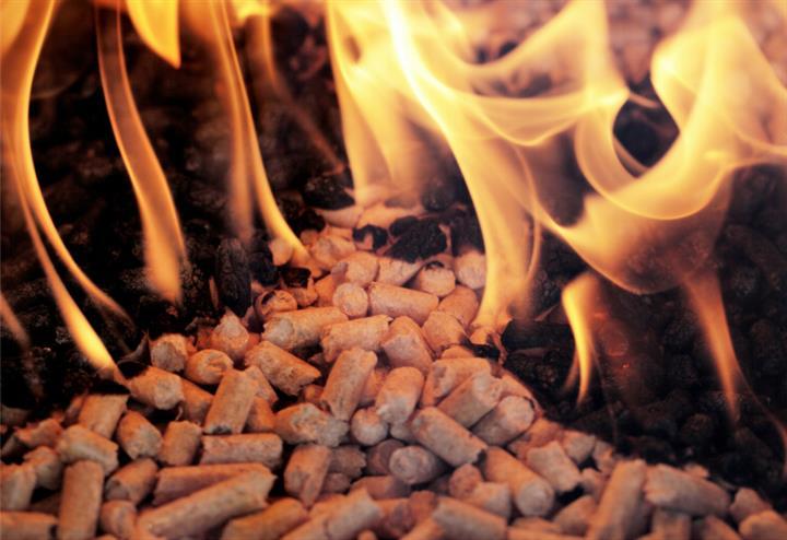 煮豆燃豆萁,玉溪市烤烟烧烟杆生物质颗粒